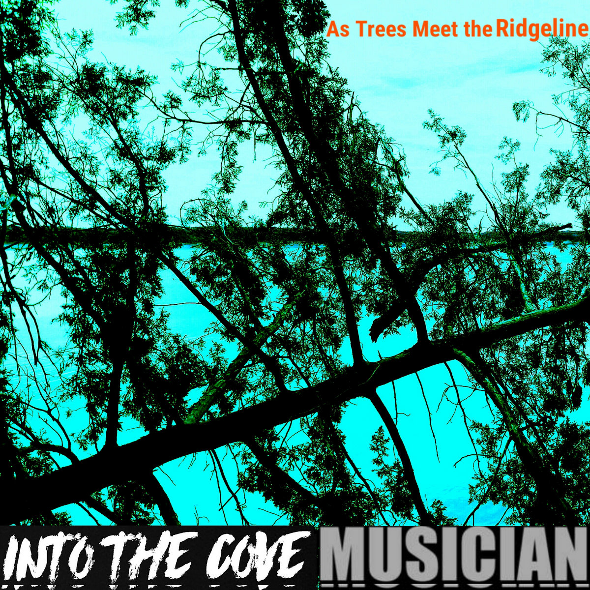 MUSICIAN/Into The Cove split/collab