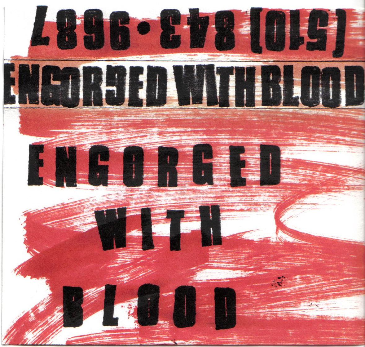 Engorged With Blood